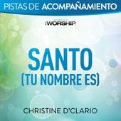 Santo (Tu Nombre Es) by Christine D'Clario