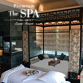 Play & Download The Spa by Various Artists | Napster