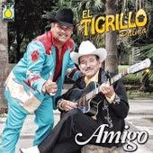 Play & Download Amigo by El Tigrillo Palma | Napster