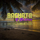 Play & Download Bachata y Boleros: Exitos Romanticos by Various Artists | Napster
