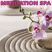 Play & Download Meditation Spa by Various Artists | Napster
