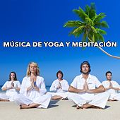 Play & Download Música de Yoga y Meditación by Various Artists | Napster