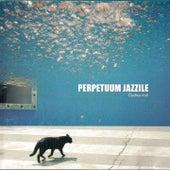 Čudna Noč von Perpetuum Jazzile
