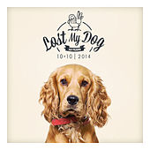 Play & Download Lost My Dog 10x10 - 2014 by Various Artists | Napster