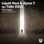 Play & Download The Future by Liquid Soul | Napster