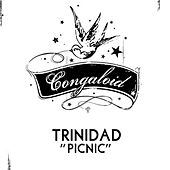 Play & Download Picnic (Original Mix) by Trinidad | Napster