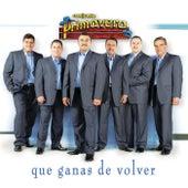 Play & Download Que Ganas De Volver by Conjunto Primavera | Napster
