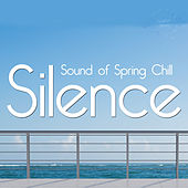 Silence - Sound of the Spring Chill by Various Artists