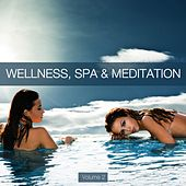 Wellness, Spa & Meditation, Vol. 2 by Various Artists