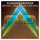 Play & Download Never Lose Your Dreams by Vladimir Grishko | Napster