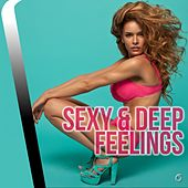 Play & Download Sexy & De Feelings - EP by Various Artists | Napster