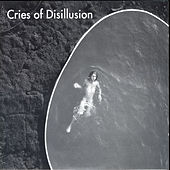 Cries Of Disillusion by Assif Tsahar