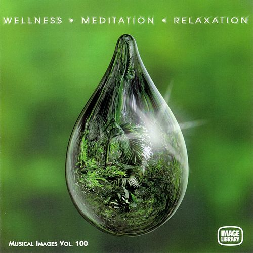 Wellness Meditation Relaxation: Musical Images, Vol. 100 by Sambodhi Prem