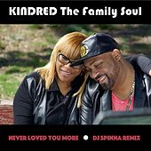 Play & Download Never Loved You More (DJ Spinna Remix) by Kindred The Family Soul | Napster