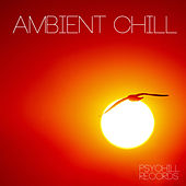 Play & Download Ambient Chill by Various Artists | Napster
