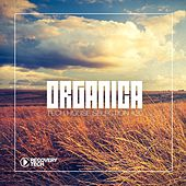 Play & Download Organica #20 by Various Artists | Napster