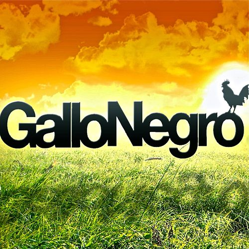 Ensamma - Single by El Gallo Negro