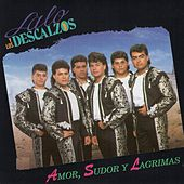 Play & Download Amor Sudor Y Lagrimas by Lalo Y Los Descalzos | Napster
