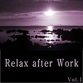 Play & Download Relax After Work, Vol. 1 by Various Artists | Napster