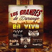 Los Grandes De Durango En Vivo by Various Artists