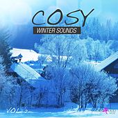 Cosy Winter Sounds, Vol. 2 by Various Artists