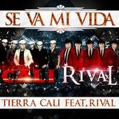 Play & Download Se Va Mi Vida (feat. Rival) by Tierra Cali | Napster