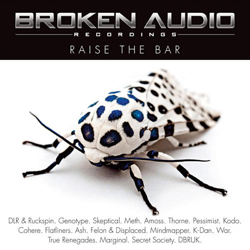 Raise the Bar by Various Artists