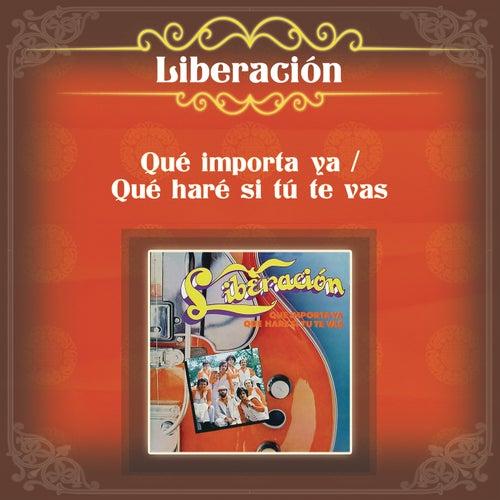 Play & Download Qué Importa Ya / Que Haré Si Tú Te Vas by Liberación | Napster