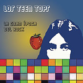 La Gran Época del Rock by Los Teen Tops