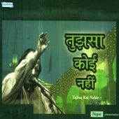 Play & Download Tujhsa Koi Nahin by Nusrat Fateh Ali Khan | Napster