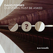 Questions Must Be Asked by David Forbes