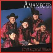 Play & Download Exitos Rancheras Perronas by Amanecer | Napster