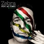 Peau de zèbre (Remixs EP) by Zebra