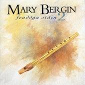 Feadoga Stain 2 by Mary Bergin