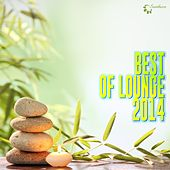 Play & Download Best of Lounge 2014 by Various Artists | Napster