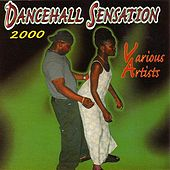 Dancehall Sensation 2000 by Various Artists