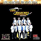Play & Download Los Huaches En Vivo 2014 by Los Huaches De Tierra Caliente | Napster