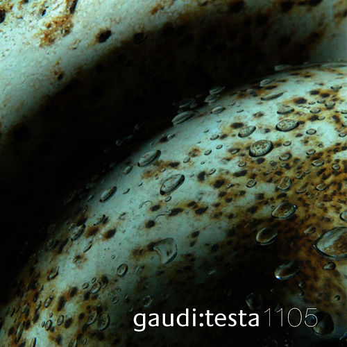 Play & Download gaudi:testa 1105 - CONTINVVM by Gaudi | Napster