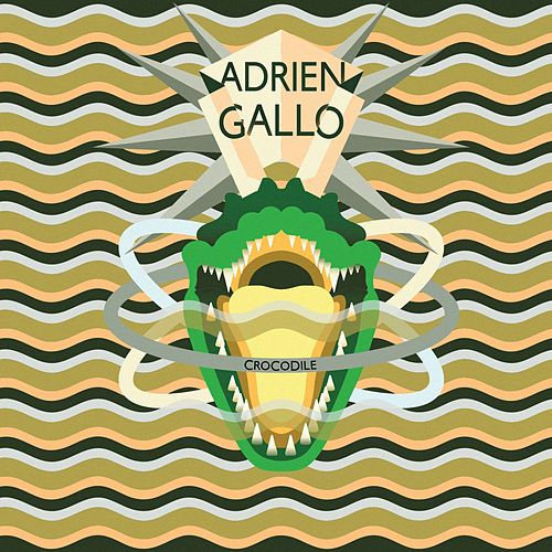 Crocodile (Domenico Torti Remix) de Adrien Gallo