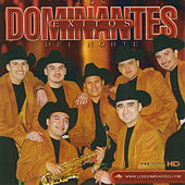 Exitos by Dominantes Delnorte