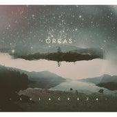 Orcas by Lulacruza