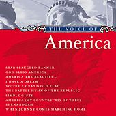 Play & Download The Voice of America by Various Artists | Napster