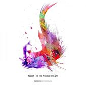 In the Process of Eight by Various Artists