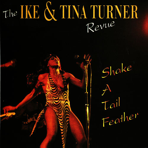 Shake A Tail Feather by Ike and Tina Turner