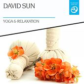 Play & Download Yoga & Relaxation by David Sun | Napster