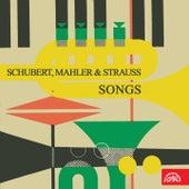 Schubert, Mahler, Strauss: Songs by Alfréd Holeček