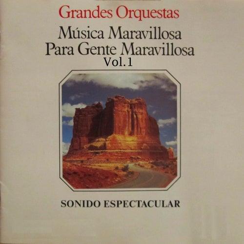 Música para gente Maravillosa Grandes Orquestas by Various Artists