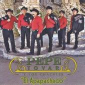 Play & Download El Apapachado by Pepe Tovar Y Los Chacales | Napster