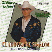 Play & Download Exitos by El Lobito De Sinaloa | Napster