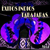 Play & Download Éxitos Indios Tabajaras, Vol. 2 by Los Indios Tabajaras | Napster